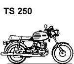 TS 250