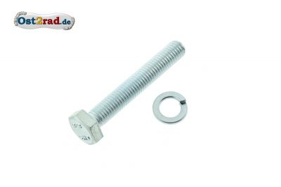 Screw with spring washer for rear suspension struts MZ, below